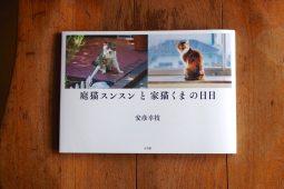 猫の生と死を見守る写真家のあたたかい眼差し『庭猫スンスンと家猫くまの日日』
