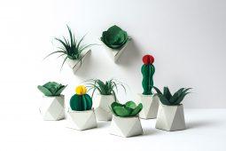 すべて紙!組み立てる植物「PAPELANTS」あそび